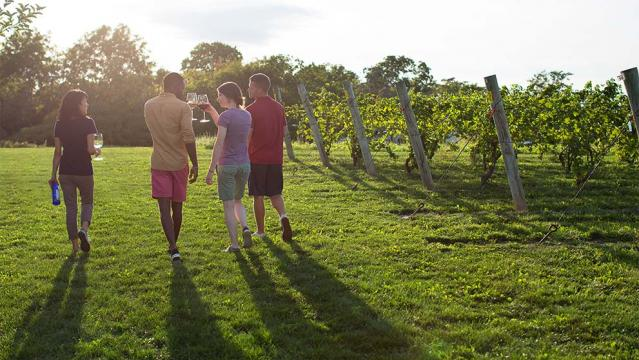 niagara falls wineries